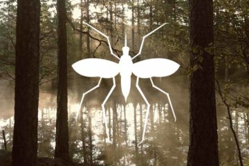 Mosquito by Marco Livolsi from the Noun Project, Photo by Vidar Kristiansen on Unsplash